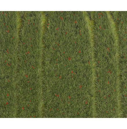 F180458 PREMIUM Landskapssegment sädesfält med vallmo