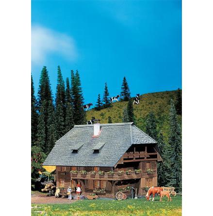 130367 Schwarzwaldhus