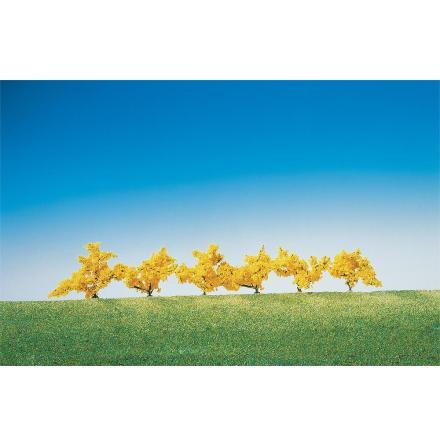 181475 Forsythior gula blommor 6 st