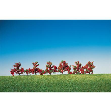 181476 Buske rödblommande 6 st