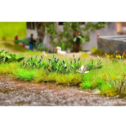 N14142 Laser-Cut minis Pickerel weed, 16 plants