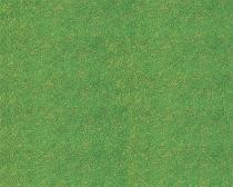 170725 Gräs gräsgrön