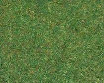 170726 Gräs mörkgrön