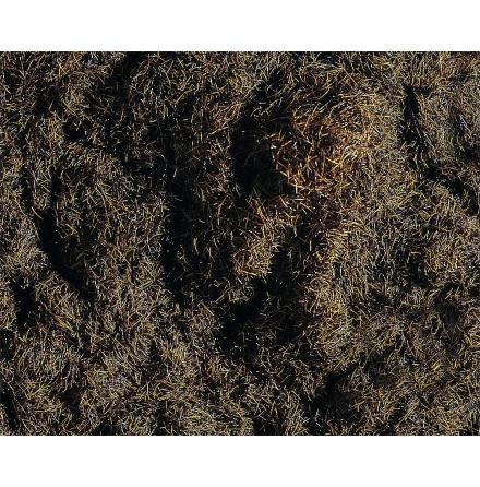 170727 Gräs mörkbrun