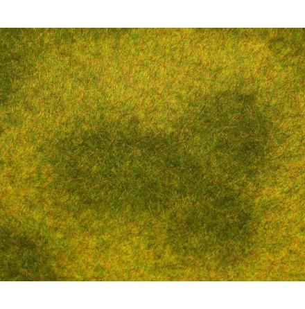 180488 PREMIUM Landskapssegment äng ljusgrön