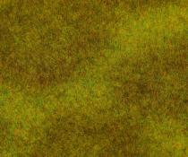 180488 PREMIUM Landskapssegment äng m.grön