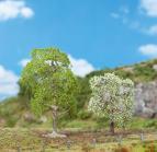 181190 PREMIUM Vilda körsbärsträd 2 st