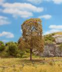 181194 PREMIUM Lindträd höst 1 st