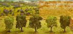 181218 PREMIUM Lövträd 5 st