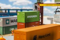 """180821 Container """"Evergreen"""""""