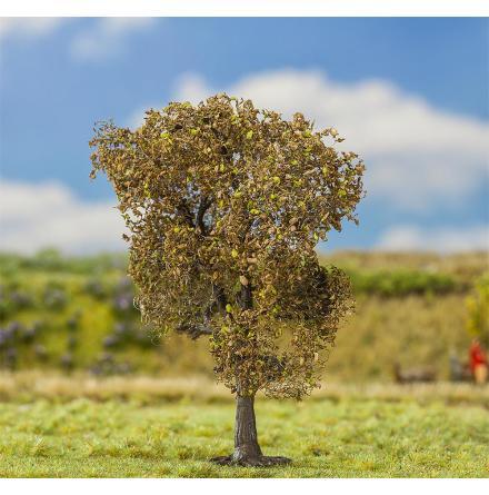 181181 Träd PREMIUM Fältlönn