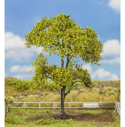 181183 Träd PREMIUM Bok